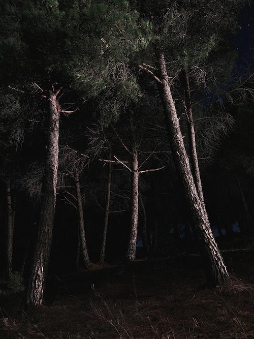 PV_A5_08